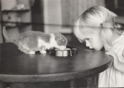Comrade Cat, 1970